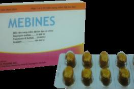 Thuốc đặt phụ khoa Mebines được chỉ định điều trị nhiễm khuẩn và nhiễm nấm âm đạo