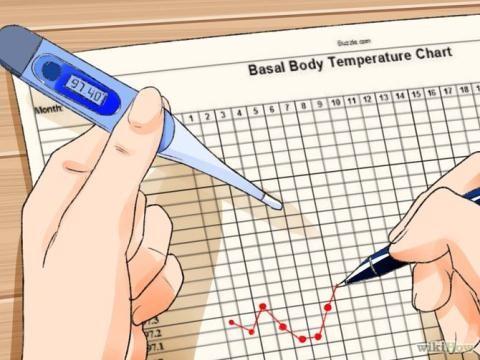 cách tính ngày rụng trứng bằng nhiệt kế